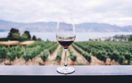 Het perfecte flesje wijn als cadeau